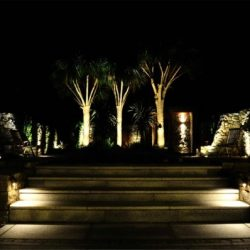 Step lighting and uplighting of bushes